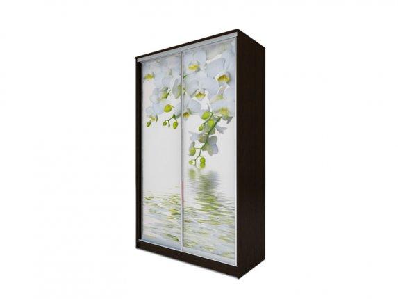 Шкаф-купе 2-х дверный Хит-77 фотопечать Белая орхидея